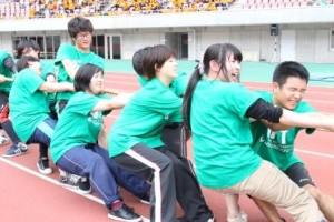 tsunahiki2