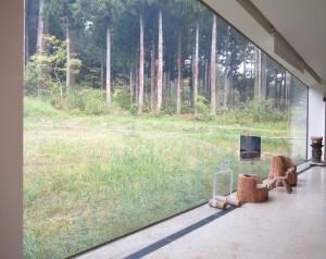 IMG_0748_window